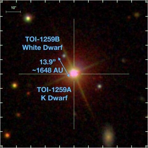 фото Martin et al.1